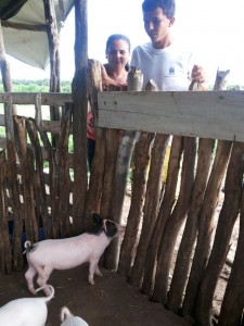 Maicon with his mum and the expanding pig sty.