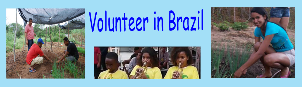 Volunteer in Brazil